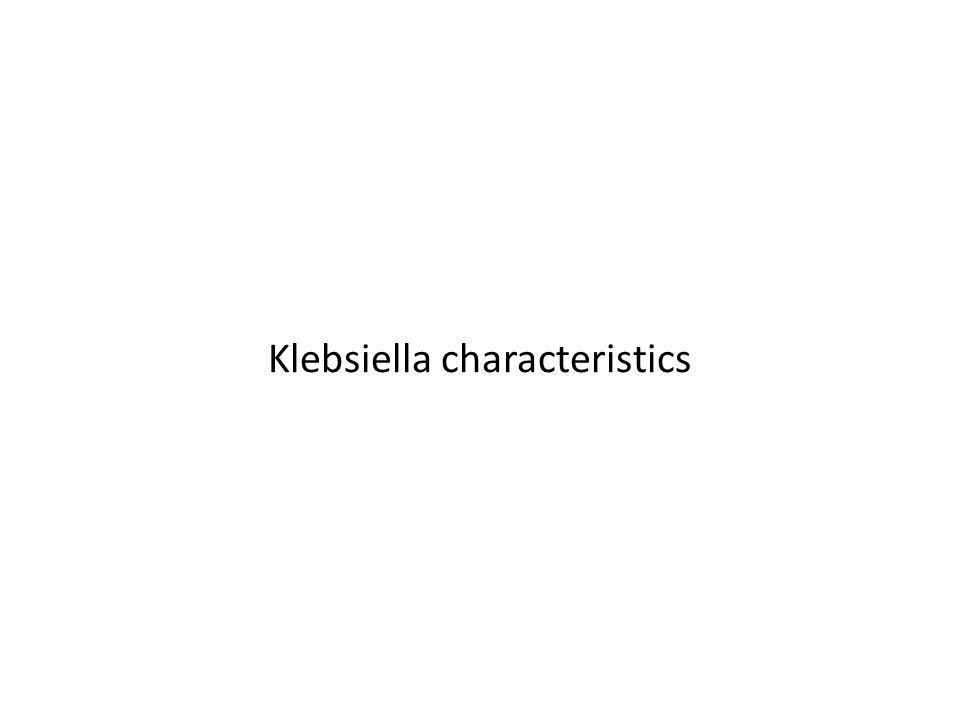 Klebsiella characteristics
