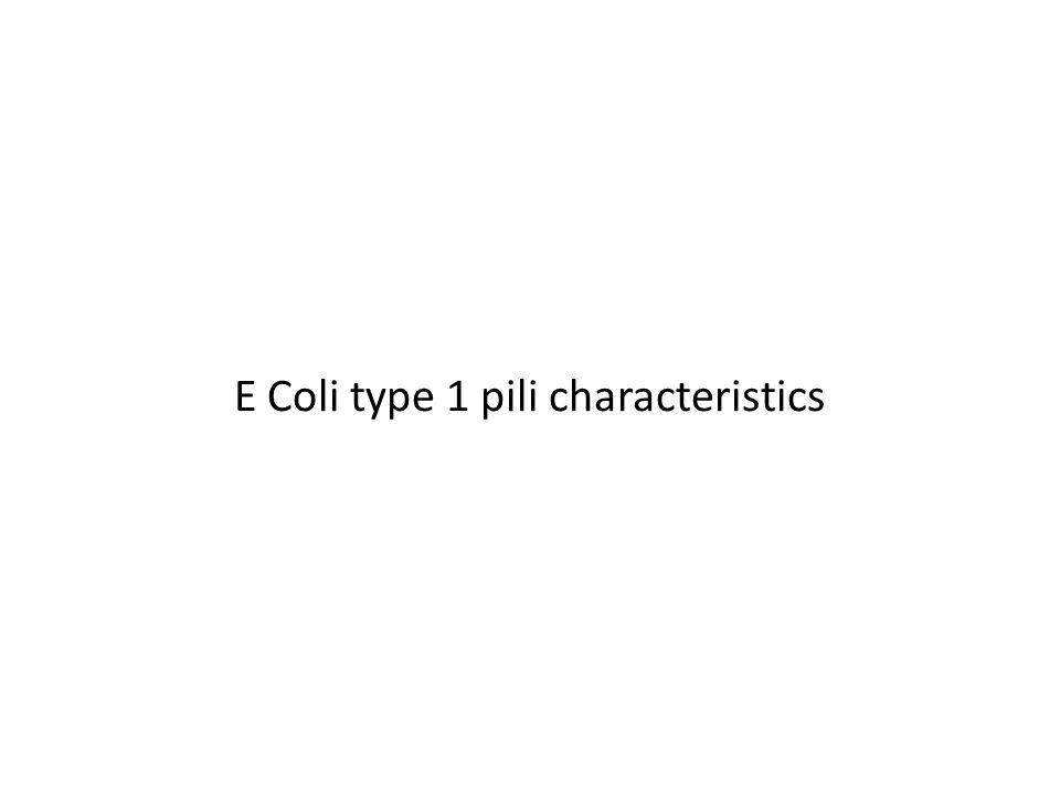E Coli type 1 pili characteristics