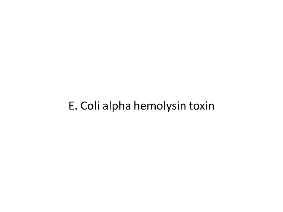 E. Coli alpha hemolysin toxin