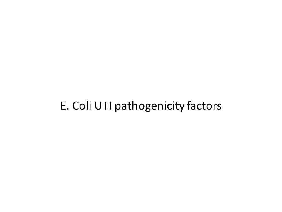 E. Coli UTI pathogenicity factors