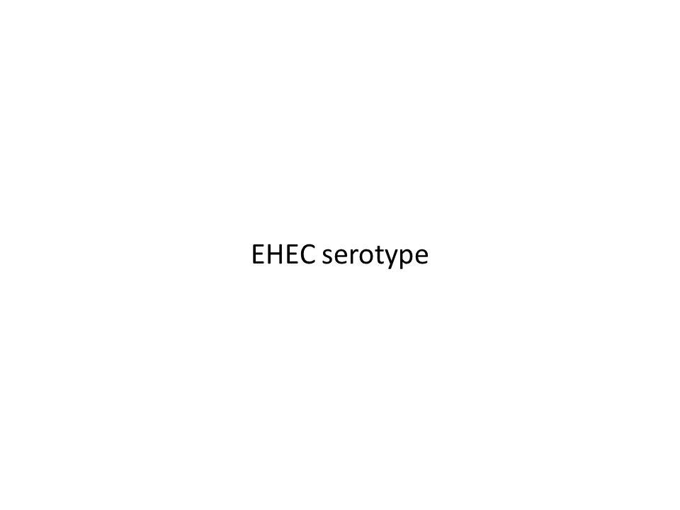EHEC serotype