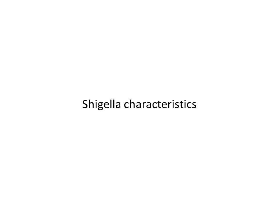 Shigella characteristics
