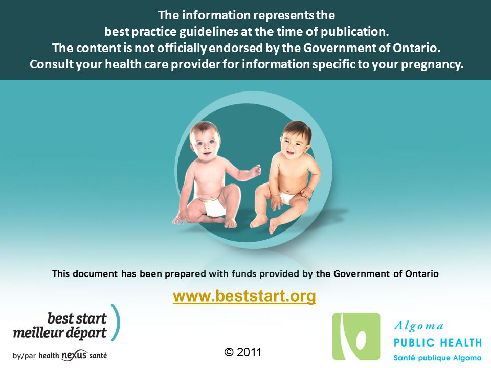 This document has been prepared with funds provided by the Government of Ontario © 2011 www.beststart.org The information represents the best practice guidelines at the time of publication.