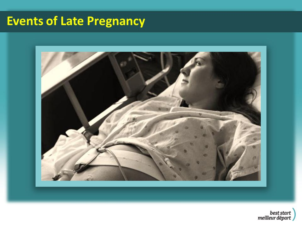 Events of Late Pregnancy