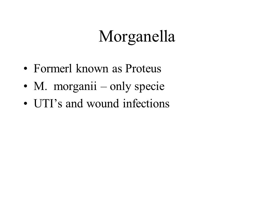 Morganella Formerl known as Proteus M. morganii – only specie UTI's and wound infections