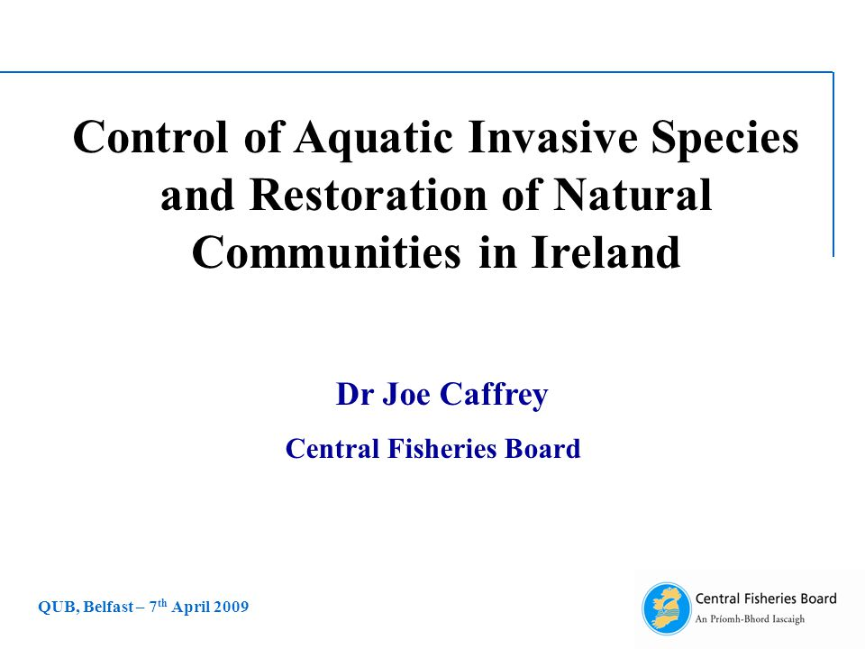 Control of Aquatic Invasive Species and Restoration of Natural Communities in Ireland Dr Joe Caffrey Central Fisheries Board QUB, Belfast – 7 th April 2009