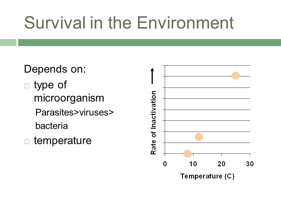 Survival in the Environment Depends on:  type of microorganism Parasites>viruses> bacteria  temperature
