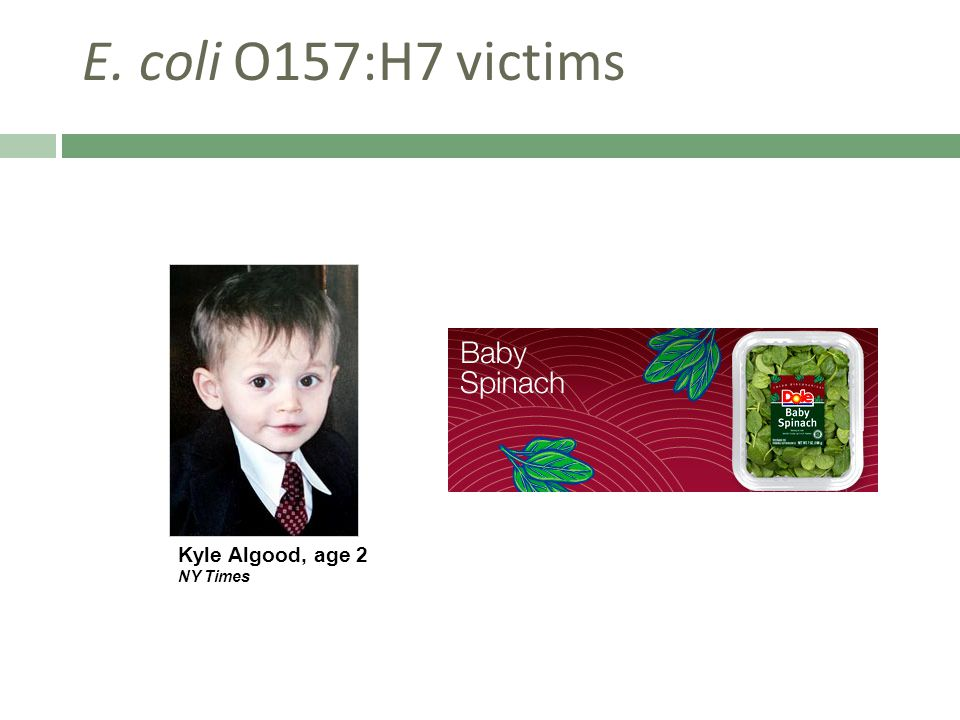 E. coli O157:H7 victims Kyle Algood, age 2 NY Times