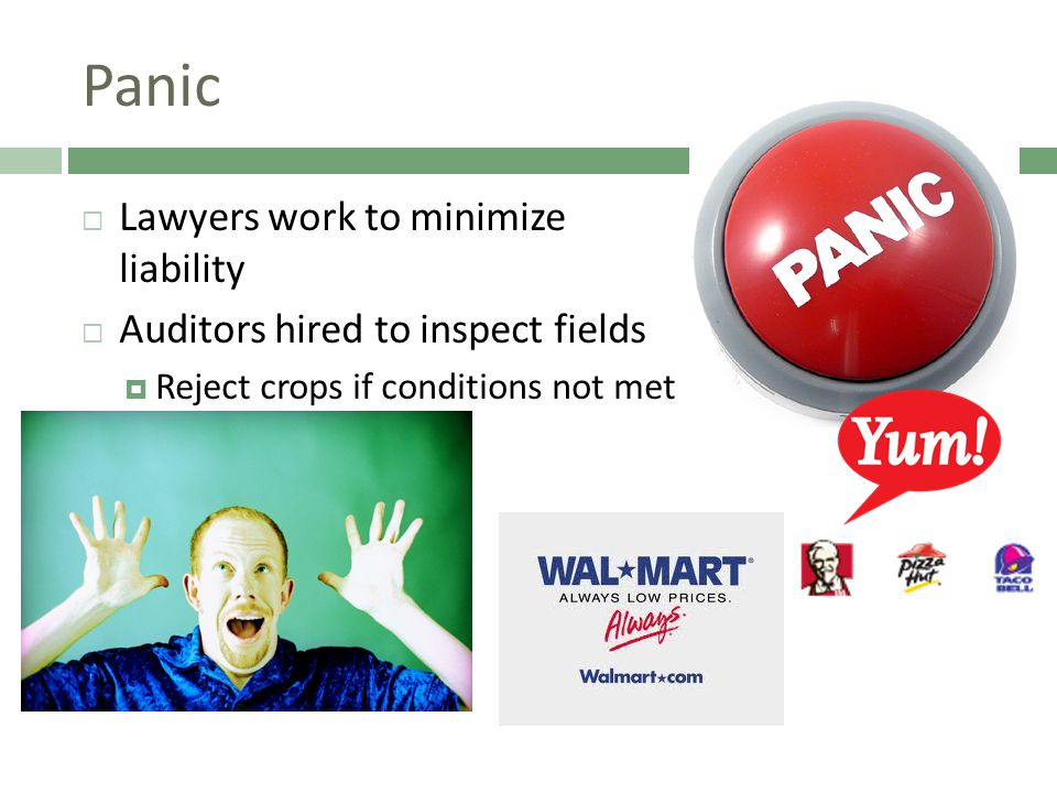 Panic  Lawyers work to minimize liability  Auditors hired to inspect fields  Reject crops if conditions not met