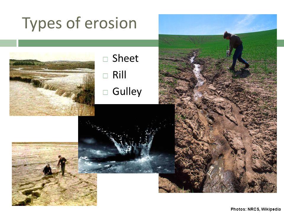 Types of erosion  Sheet  Rill  Gulley Photos: NRCS, Wikipedia