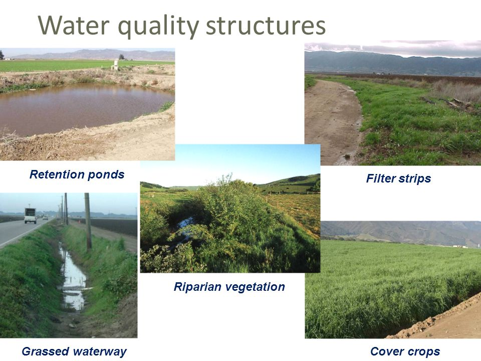 Filter strips Riparian vegetation Grassed waterway Cover crops Retention ponds Water quality structures