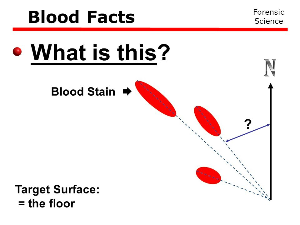 What is this Forensic Science Blood Facts Target Surface: = the floor Blood Stain 
