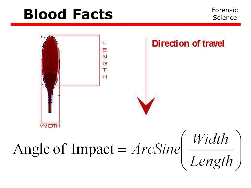 Forensic Science Blood Facts