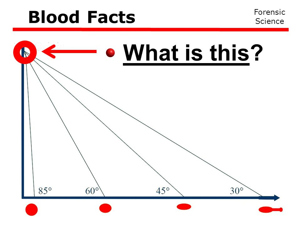 What is this Forensic Science Blood Facts