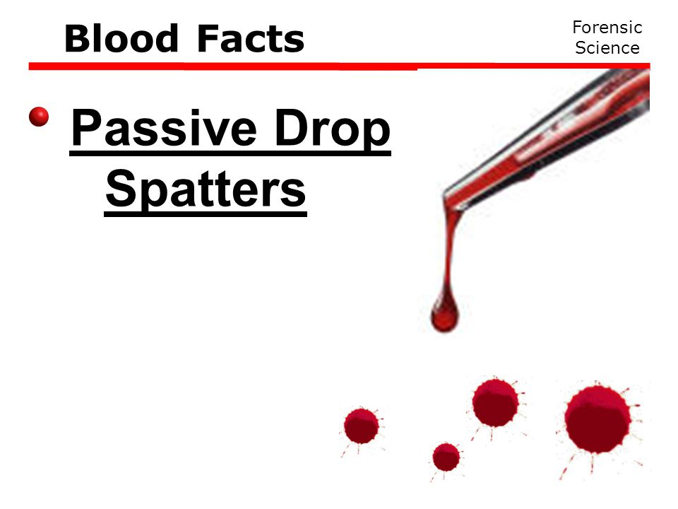 Passive Drop Spatters Forensic Science Blood Facts