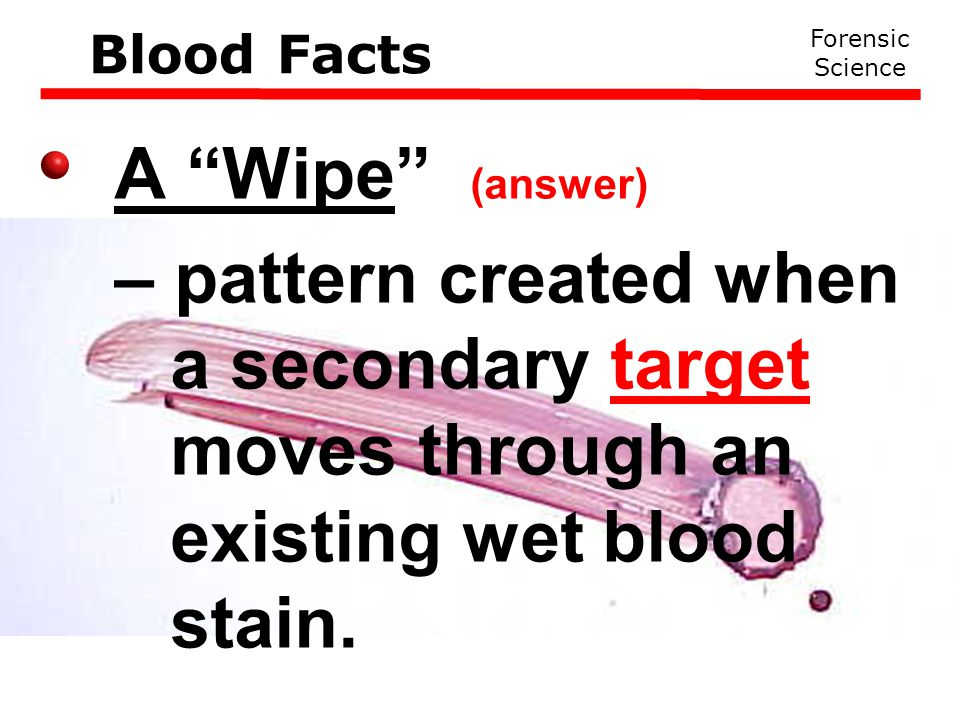 Forensic Science Blood Facts A Wipe (answer) – pattern created when a secondary target moves through an existing wet blood stain.
