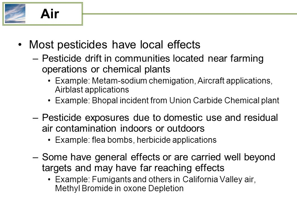 Most pesticides have local effects –Pesticide drift in communities located near farming operations or chemical plants Example: Metam-sodium chemigation, Aircraft applications, Airblast applications Example: Bhopal incident from Union Carbide Chemical plant –Pesticide exposures due to domestic use and residual air contamination indoors or outdoors Example: flea bombs, herbicide applications –Some have general effects or are carried well beyond targets and may have far reaching effects Example: Fumigants and others in California Valley air, Methyl Bromide in oxone Depletion Air