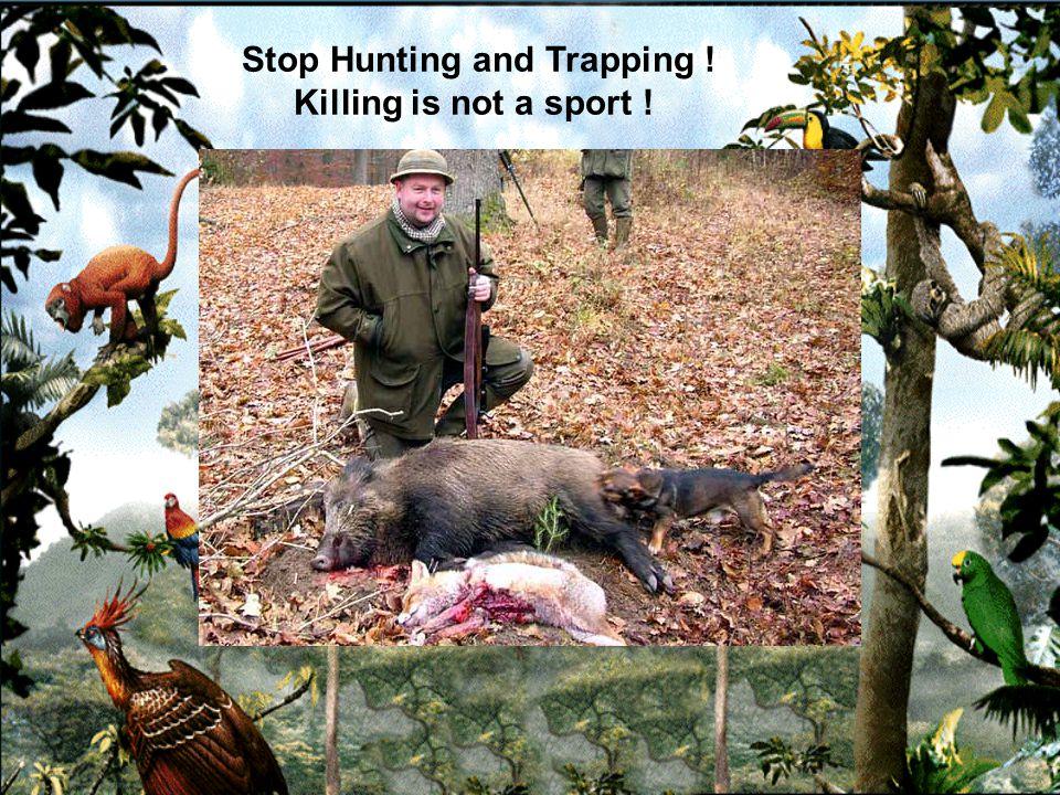 Hunting is cruel and inhumane.