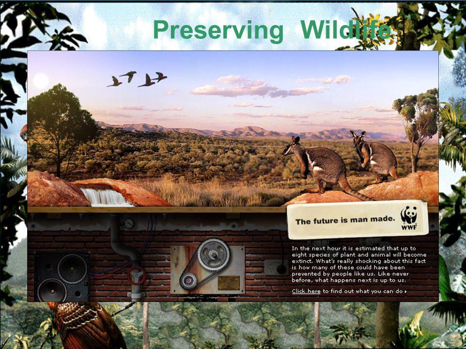 Preserving Wildlife
