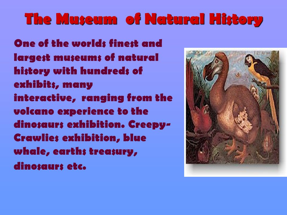 The Museum of Natural History One of the worlds finest and largest museums of natural history with hundreds of exhibits, many interactive, ranging fro
