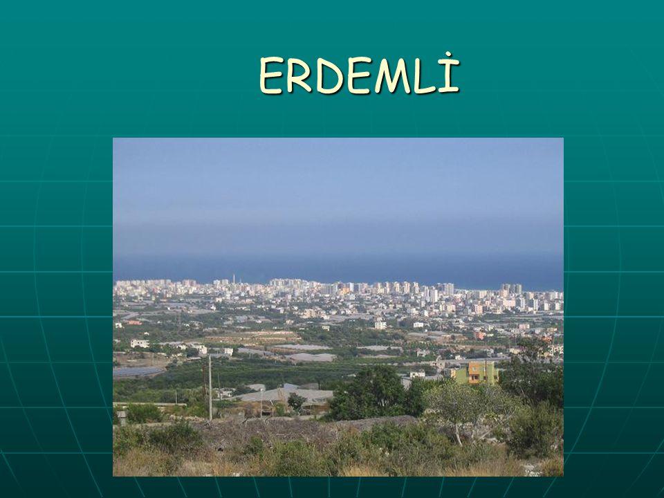 ERDEMLİ