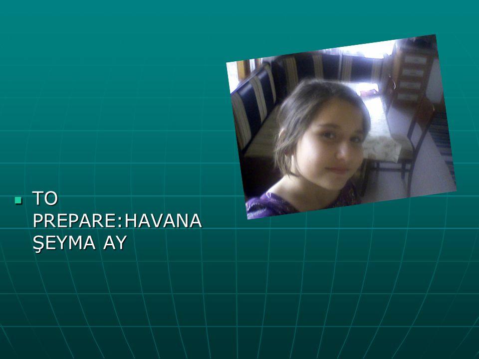 TO PREPARE:HAVANA ŞEYMA AY TO PREPARE:HAVANA ŞEYMA AY