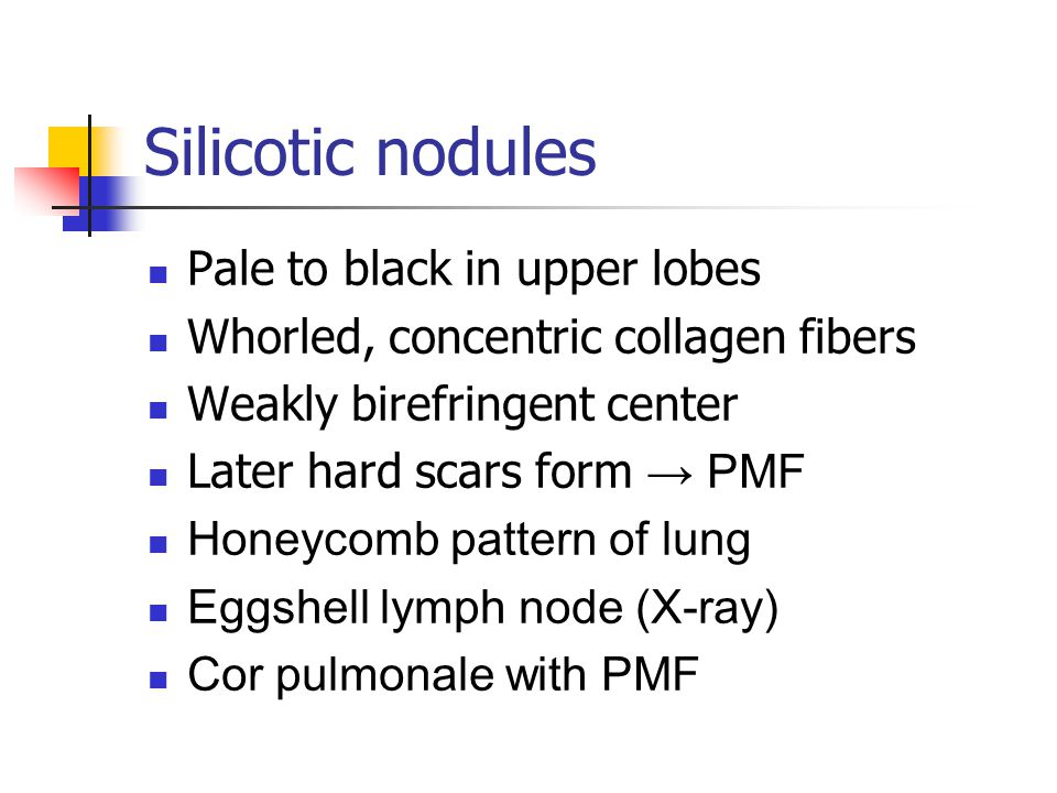 Silicotic nodules Pale to black in upper lobes Whorled, concentric collagen fibers Weakly birefringent center Later hard scars form → PMF Honeycomb pattern of lung Eggshell lymph node (X-ray) Cor pulmonale with PMF