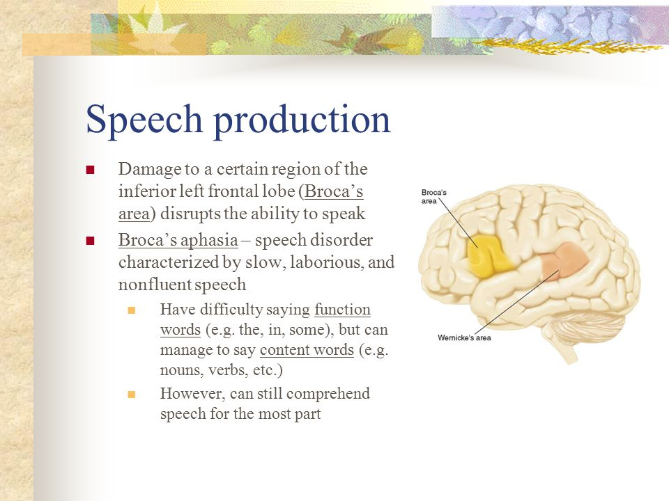 Prosody: Rhythm, tone, and emphasis in speech Prosody – the use of changes in intonation and emphasis to convey meaning in speech besides that specified by the particular words; an important means of communicating emotion Patients with fluent aphasia and Wernicke's aphasia is normal; however, it is disturbed in patients with Broca's aphasia Prosody is a special function of the R hemisphere related to the more general role of this hemisphere in musical skills and the expression and recognition of emotions Patients with R hemisphere damage show a deficit in prosodic comprehension