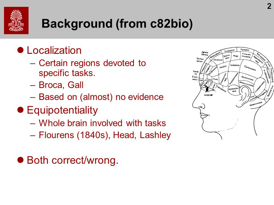 2 Background (from c82bio) Localization –Certain regions devoted to specific tasks. –Broca, Gall –Based on (almost) no evidence Equipotentiality –Whol