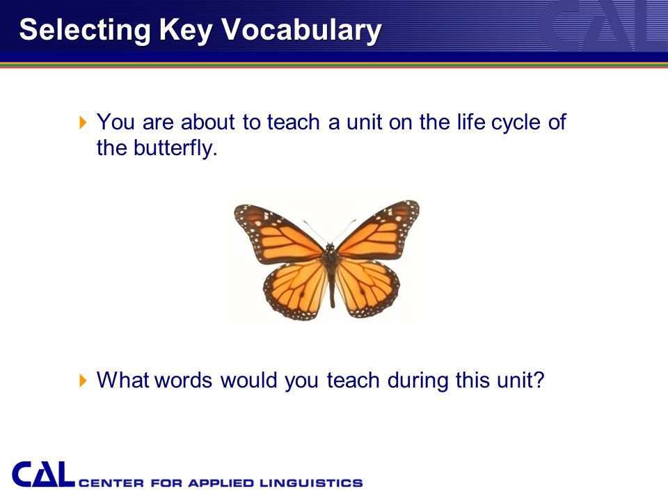 Selecting Key Vocabulary  You are about to teach a unit on the life cycle of the butterfly.