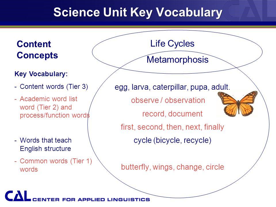 Science Unit Key Vocabulary Life Cycles Metamorphosis egg, larva, caterpillar, pupa, adult.