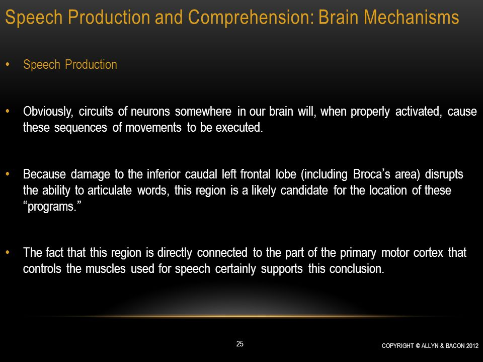 Speech Production and Comprehension: Brain Mechanisms Speech Production Obviously, circuits of neurons somewhere in our brain will, when properly acti
