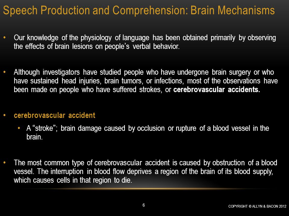 Speech Production and Comprehension: Brain Mechanisms Speech Production Wernicke's Aphasia: Analysis This hypothesis is reasonable; it suggests that the auditory association cortex of the superior temporal gyrus recognizes the sounds of words, just as the visual association cortex of the inferior temporal gyrus recognizes the sight of objects.