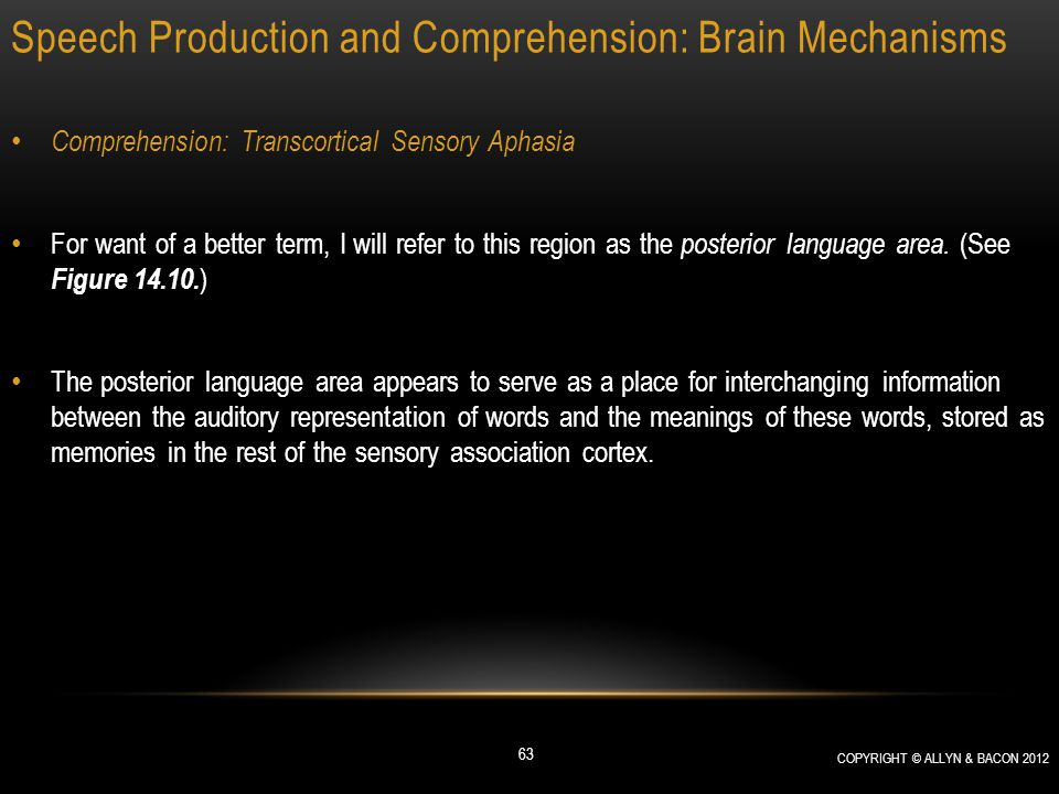 Speech Production and Comprehension: Brain Mechanisms Comprehension: Transcortical Sensory Aphasia For want of a better term, I will refer to this reg