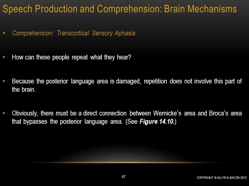 Speech Production and Comprehension: Brain Mechanisms Comprehension: Transcortical Sensory Aphasia How can these people repeat what they hear? Because