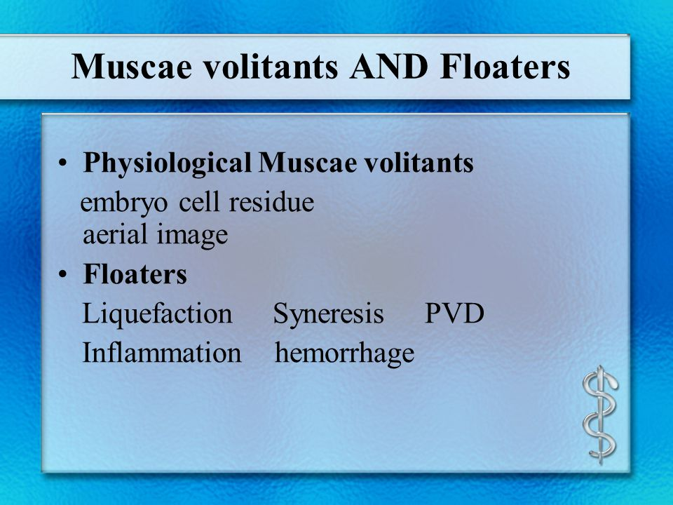 Muscae volitants AND Floaters Physiological Muscae volitants embryo cell residue aerial image Floaters Liquefaction Syneresis PVD Inflammation hemorrh