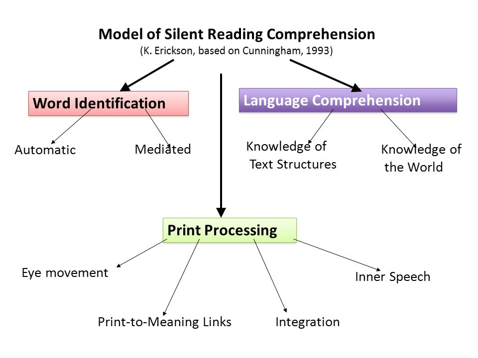 Model of Silent Reading Comprehension (K.