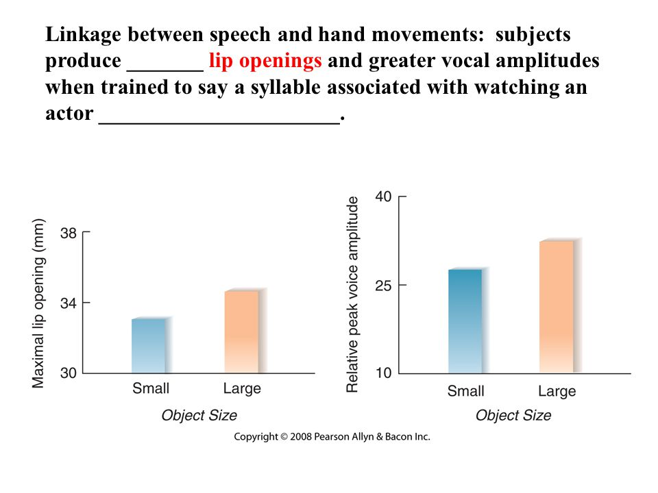 Copyright © 2008 Pearson Allyn & Bacon Inc.30 Linkage between speech and hand movements: subjects produce _______ lip openings and greater vocal amplitudes when trained to say a syllable associated with watching an actor ______________________.