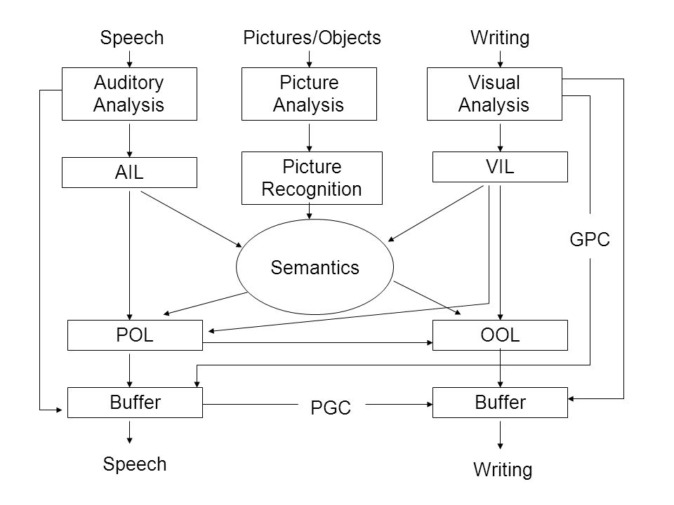 Auditory Analysis AIL VIL Visual Analysis POLOOL Semantics Picture Analysis Picture Recognition Buffer SpeechWriting Speech Writing GPC PGC Pictures/Objects