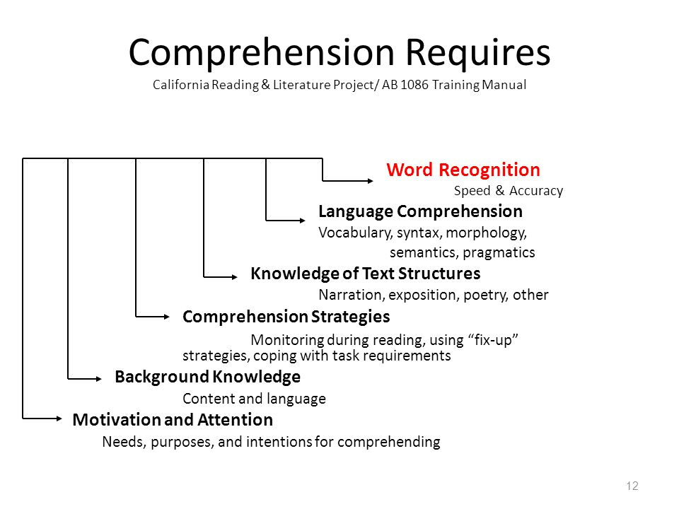 Comprehension Requires California Reading & Literature Project/ AB 1086 Training Manual Word Recognition Speed & Accuracy Language Comprehension Vocabulary, syntax, morphology, semantics, pragmatics Knowledge of Text Structures Narration, exposition, poetry, other Comprehension Strategies Monitoring during reading, using fix-up strategies, coping with task requirements Background Knowledge Content and language Motivation and Attention Needs, purposes, and intentions for comprehending 12