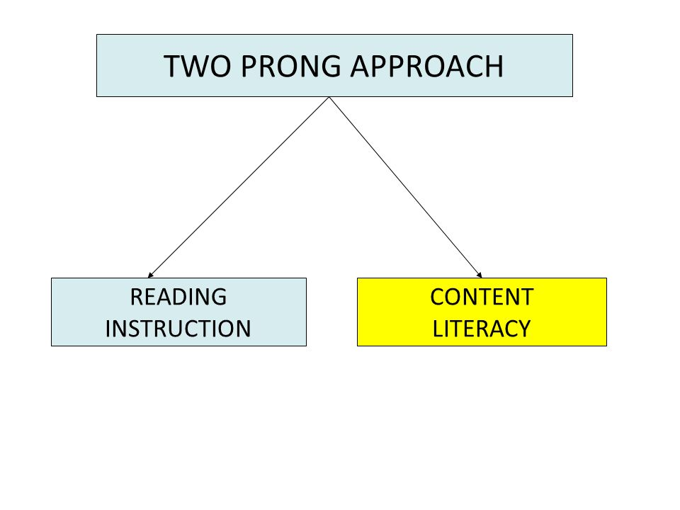 TWO PRONG APPROACH READING INSTRUCTION CONTENT LITERACY