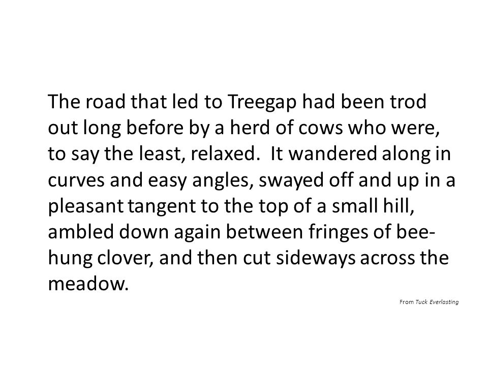 The road that led to Treegap had been trod out long before by a herd of cows who were, to say the least, relaxed. It wandered along in curves and easy