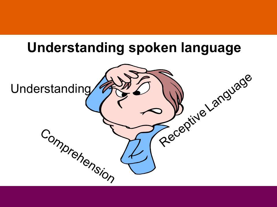Understanding spoken language Receptive Language Comprehension Understanding