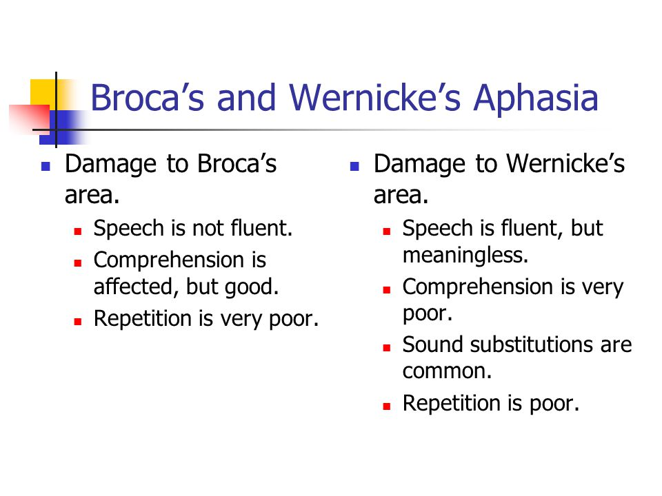 Broca's and Wernicke's Aphasia Damage to Wernicke's area.