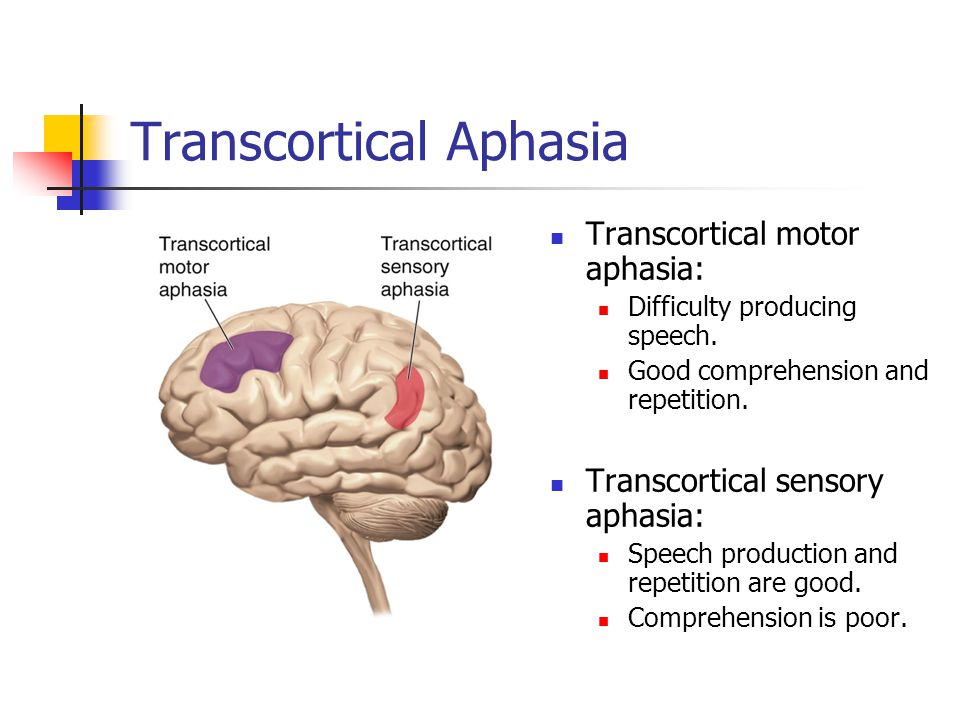 Transcortical Aphasia Transcortical motor aphasia: Difficulty producing speech.