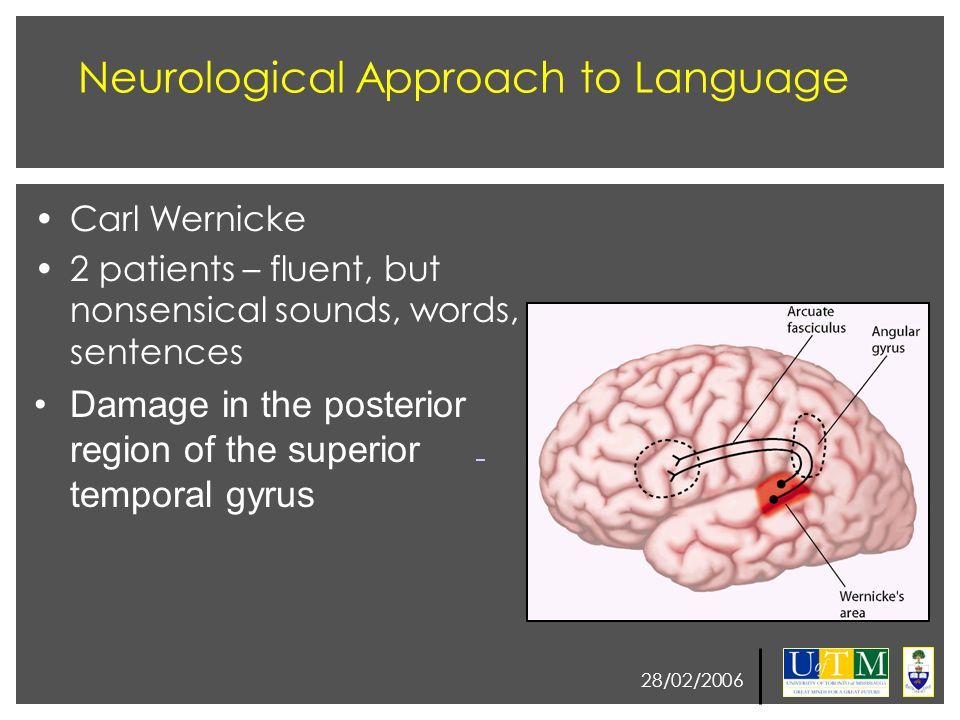 28/02/2006 Neurological Approach to Language Aphasia refers to a disorder of language apparent in speech, in writing ( agraphia ) or in reading ( alexia ) produced by injury to brain areas specialized for these functions.