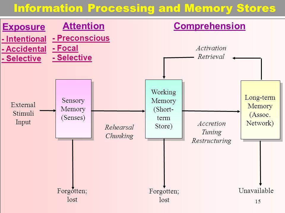 Sensory Memory (Senses) Sensory Memory (Senses) Working Memory (Short- term Store) Long-term Memory (Assoc.