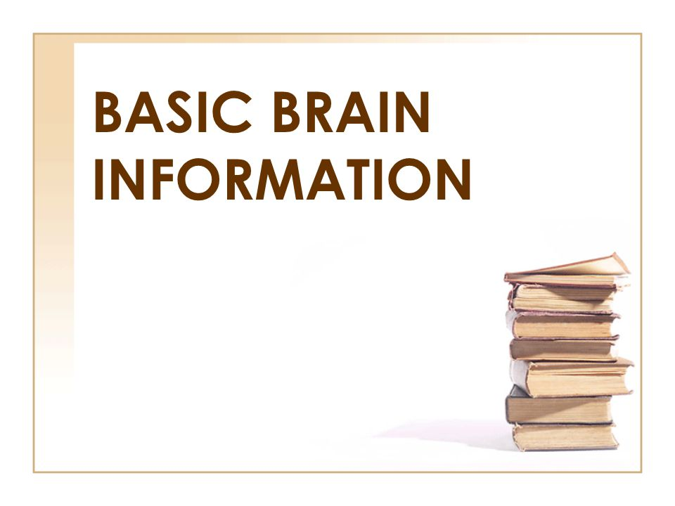 BASIC BRAIN INFORMATION