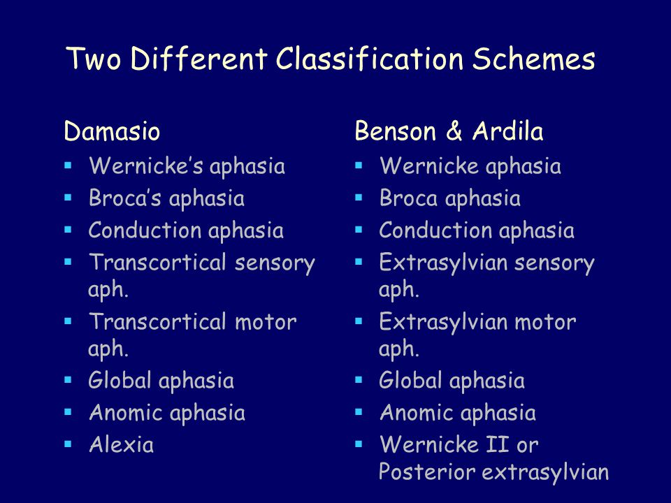 Two Different Classification Schemes Damasio  Wernicke's aphasia  Broca's aphasia  Conduction aphasia  Transcortical sensory aph.