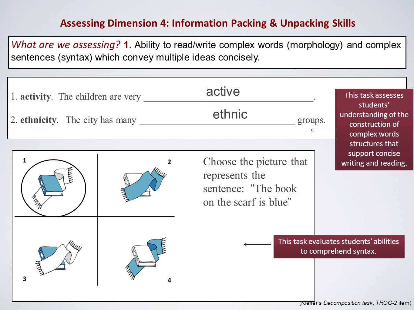 Assessing Dimension 4: Information Packing & Unpacking Skills What are we assessing.